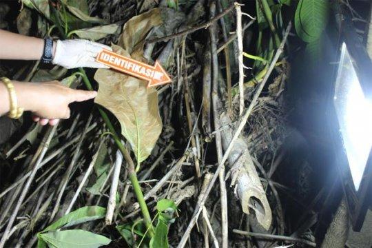 Pembunuh bayi di Barito Utara seorang bidan