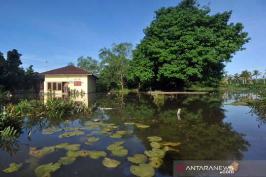 Banjir rob genangi kawasan Padangpariaman