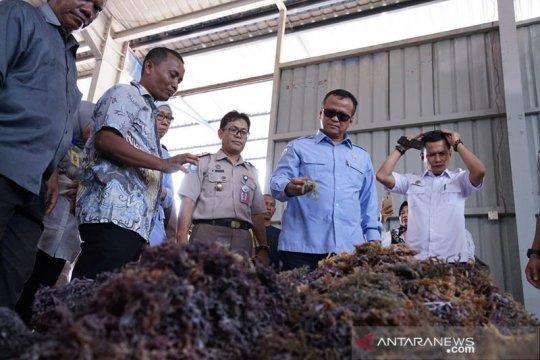 KKP akan optimalkan dana BLU LPMUKP bagi nelayan