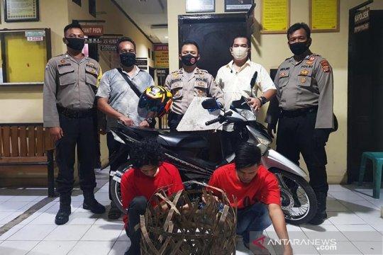 Polresta Banda Aceh bekuk dua pengendara sepeda motor aniaya polisi