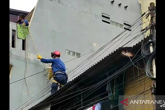 Damkar Jakbar selamatkan kucing terjebak di atap rumah di Palmerah