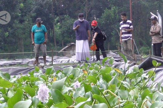 Mantan Wagub Jatim itu kini jadi petani