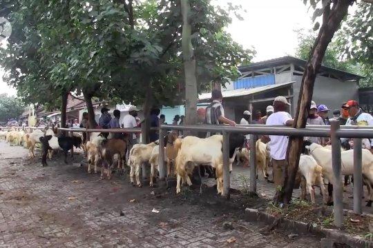Pemkab Lumajang minta masyarakat disiplin dalam penerapan normal baru
