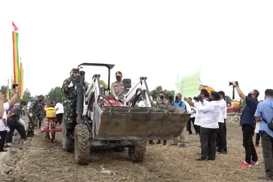 Hadapi COVID-19, Riau dorong gerakan menanam