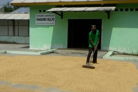 Sri Sultan jamin stok pangan DIY aman