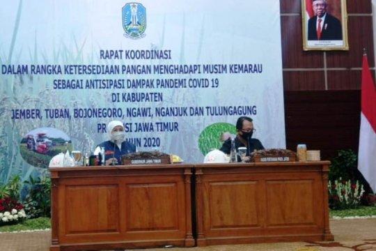 Pemprov Jatim pastikan stok beras surplus saat pandemik COVID-19
