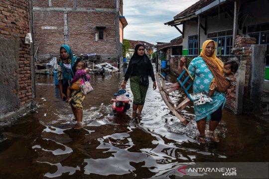BMKG: Waspadai banjir pesisir dampak ombak tinggi dan pasang maksimum