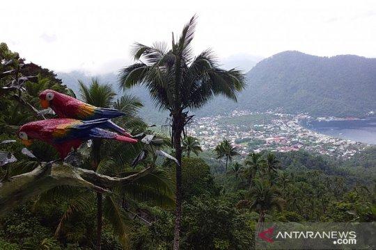 Dua kampung di Sangihe sudah salurkan BLT DD tahap ketiga