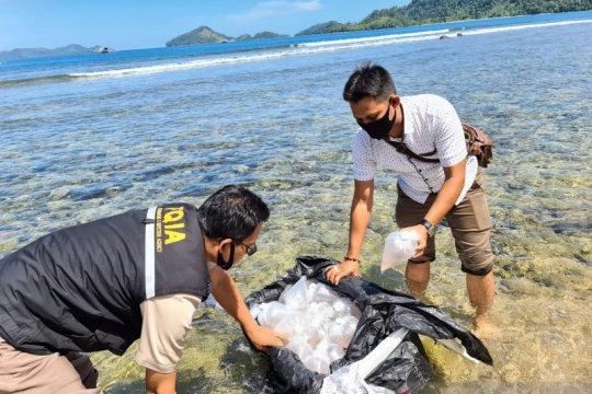 BKIPM Jambi perkuat pengawasan jalur penyelundupan benih lobster