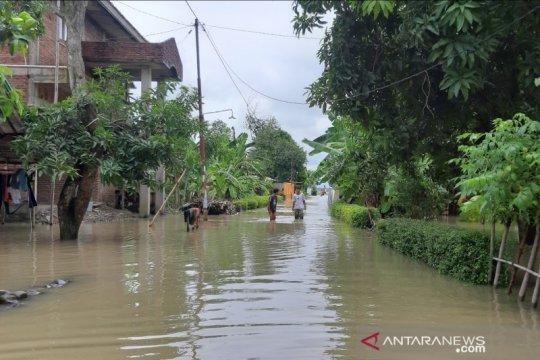 BNPB: Air laut pasang rendam 187 rumah warga di Tegal