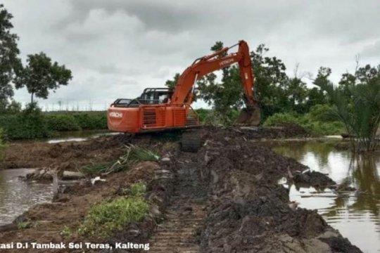 Irigasi di Kalteng bakal direhabilitasi, dukung lumbung pangan baru