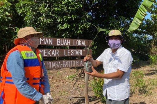 SBI dan DLH Kalsel tanam 10 ribu pohon Kasturi