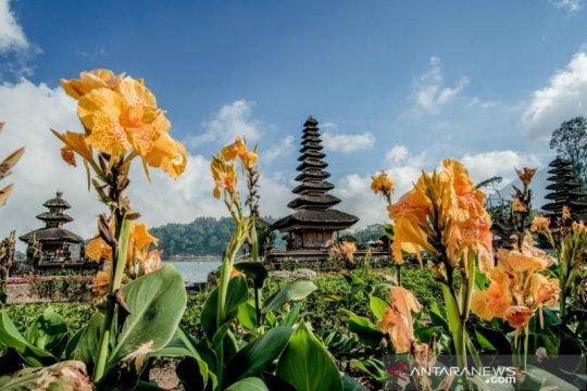 Saat normal baru pariwisata Bali incar wisman negara tetangga