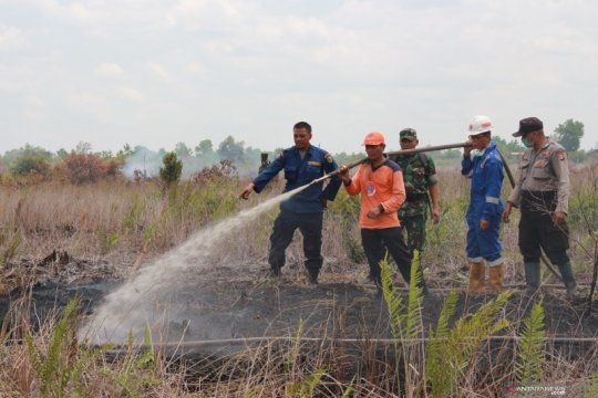 Walhi Sumsel minta perusahaan pemegang HGU cegah kebakaran