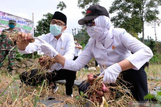BMKG ajak petani siasati perubahan iklim melalui rekayasa komoditas
