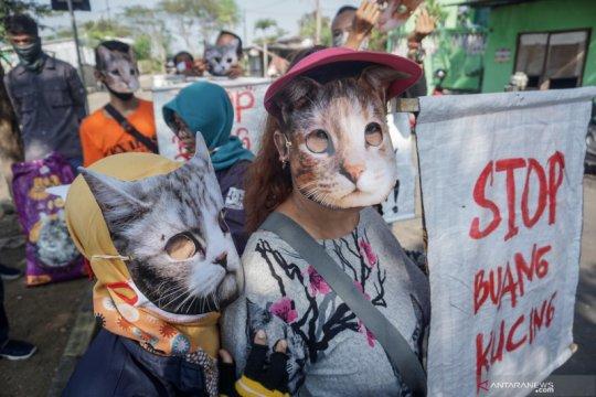 Aksi seruan stop buang kucing