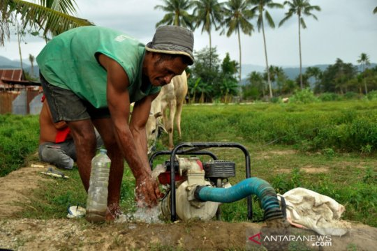 Petani Sigi mulai nikmati manfaat sumur pertanian bantuan ACT