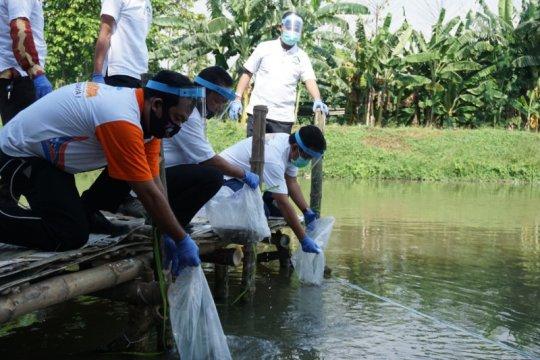Jaga ketersediaan pangan, BKIPM lepas liarkan 200.000 ikan endemik