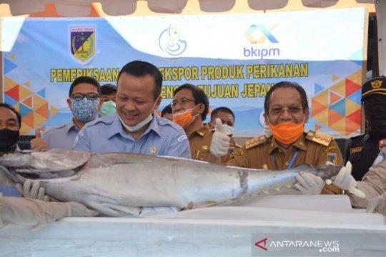 Sulteng ekspor perdana tuna sirip kuning ke Jepang