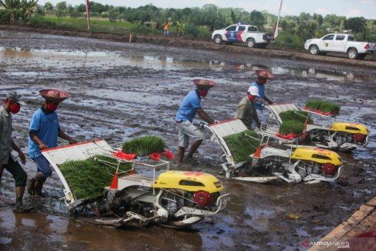 Mentan minta petani muda lakukan pendekatan baru pertanian modern