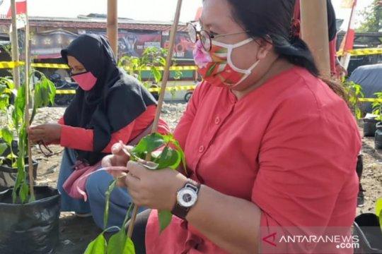 Sudin KPKP Jakarta Pusat tebar 10.000 bibit ikan di Kebon Kosong