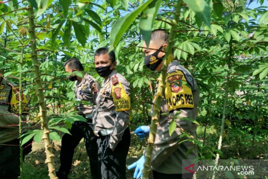 Polres Subang ikut menjaga ketahanan pangan di tengah pandemi COVID-19