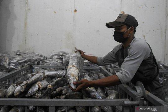 KKP bersyukur ekspor perikanan dari pendingin di Muara Baru lancar