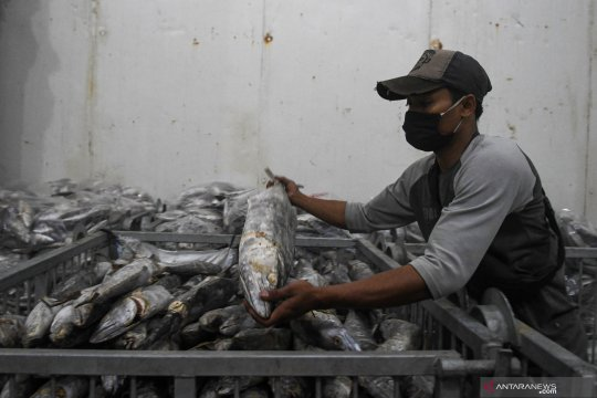 Ini jawaban KKP soal larangan ekspor produk perikanan ke China