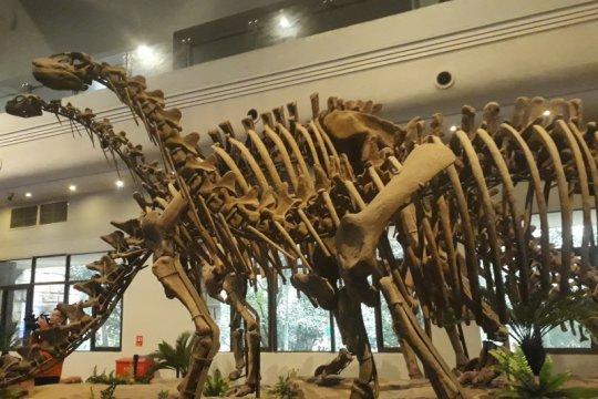 Jejak dinosaurus ditemukan di Xinjiang
