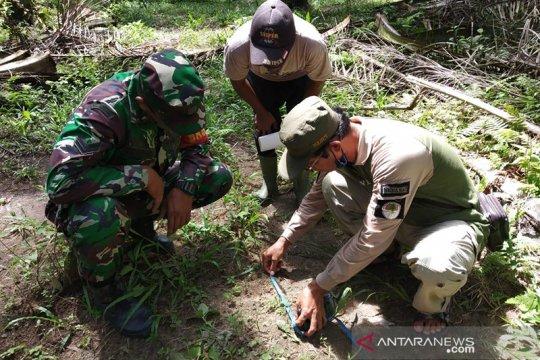 BBKSDA Riau turunkan tim ke lokasi harimau terkam dua sapi warga
