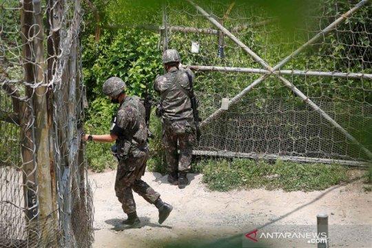 Begini aktivitas tentara pengamanan perbatasan kedua Korea