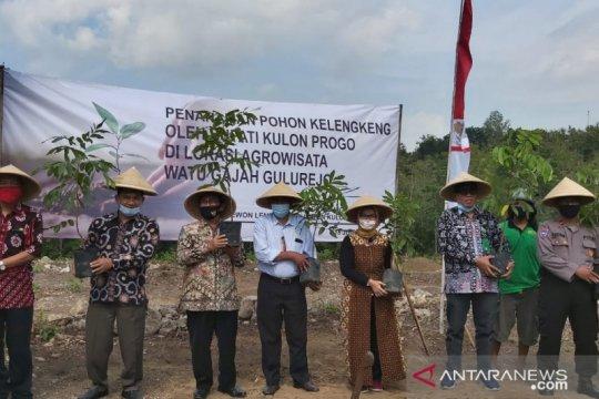 Kelompok tani Kulon Progo kembangkan lengkeng di lahan tandus