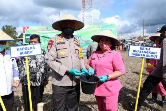 Kapolda Sumut bantu masyarakat Karo dengan 500 kg bibit jagung