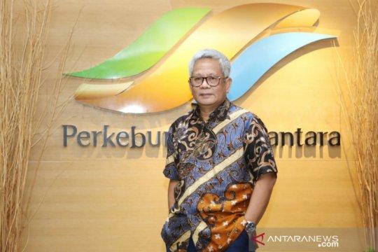 Holding PTPN bersama Pertamina kembangkan PLTS di KEK Sei Mangkei