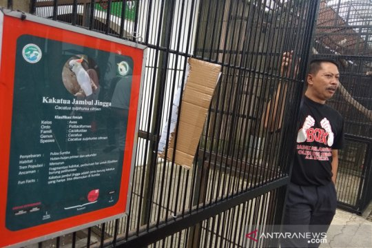 Setelah tiga bulan tutup, Taman Satwa Cikembulan Garut kembali dibuka