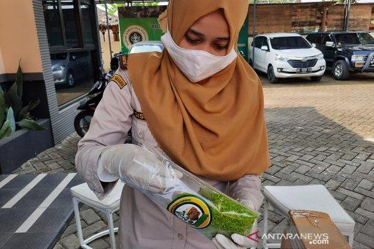 """Karantina Pertanian Surabaya promosikan beras """"konjac"""" ke Korea"""