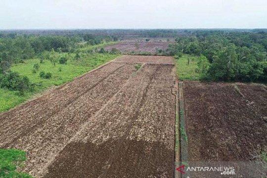 Menteri PUPR akan desain ulang jaringan irigasi Food Estate di Kalteng