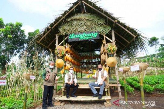 Doni Monardo puji sertifikasi protokol kesehatan pariwisata Banyuwangi