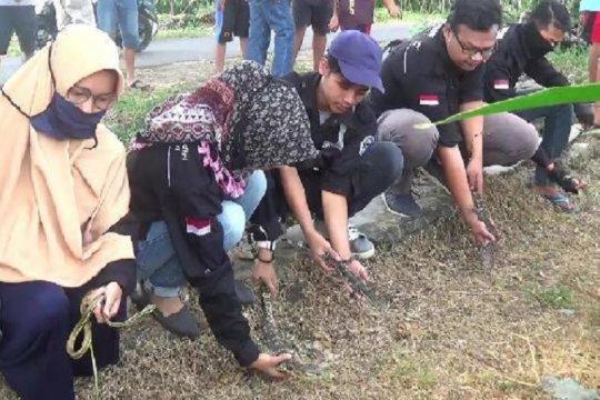 Warga Kabupaten Kediri lepas hewan liar tekan hama