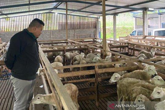 Pertamina gandeng UMM jadikan 32 UMKM peternak di Malang naik kelas