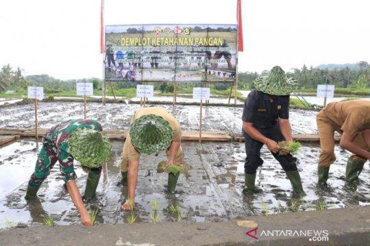 Pangdam Udayana dan Bupati Gianyar tanam padi demi ketahanan pangan