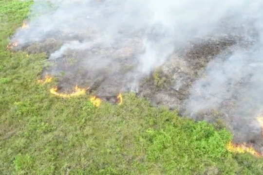 BMKG Kalteng imbau masyarakat tidak membakar lahan