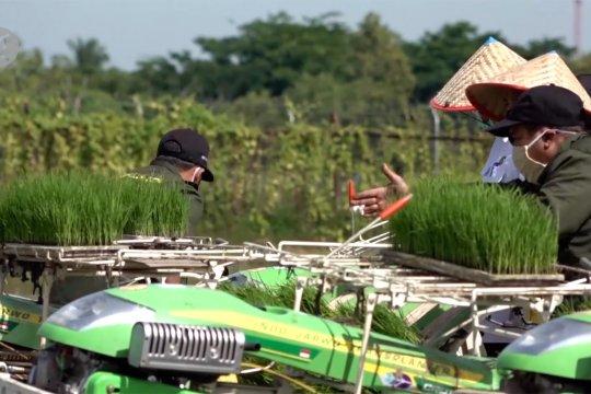 Cara Aceh pastikan ketahanan pangan selama pandemi