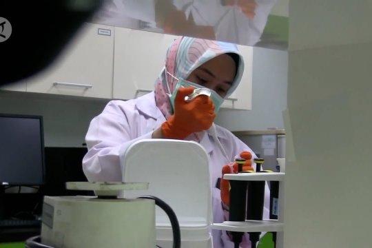 Virus Corona jenis baru di Indonesia diyakini belum bermutasi