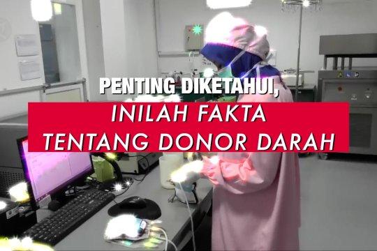 Penting diketahui, inilah fakta tentang donor darah