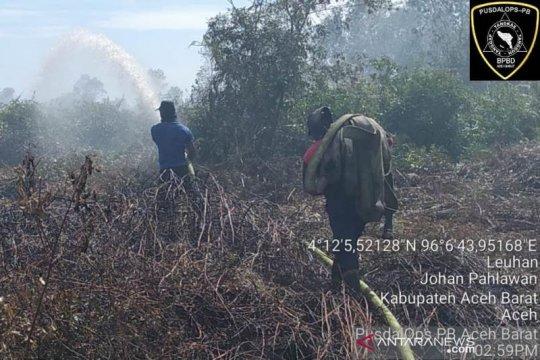 Seluas 10,5 hektare lahan di Aceh Barat terbakar