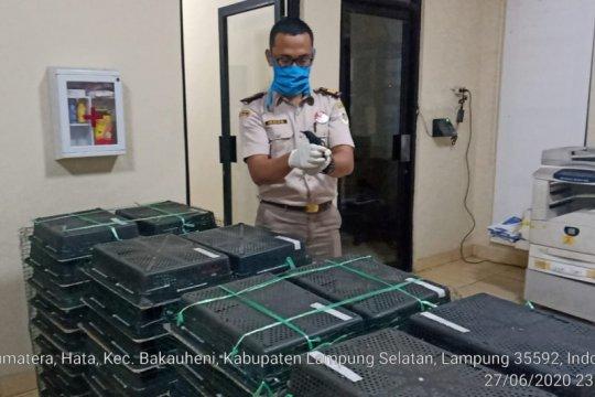 Karantina Pertanian Lampung gagalkan penyelundupan 1.673 burung