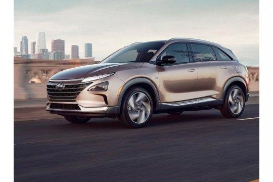 Hyundai perpanjang penangguhan pabrik di Korsel pada akhir Juli