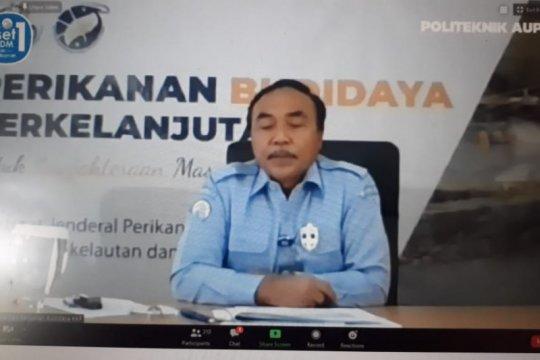KKP siap sinergi lintas sektor garap 100.000 hektare tambak udang