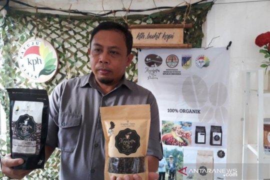 Langkah Pemprov Sulteng bangun kesejahteraan masyarakat sekitar hutan